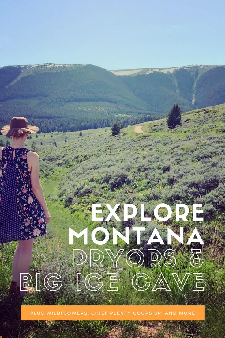 Big Ice Cave, Pryor Mountains, Montana Wildflowers
