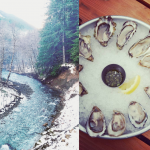 Is it Hamma Hamma or Hama Hama?! | Hama Hama Oyster Saloon and Rec Area || PNW Day Trip || AT HOME ON THE GO